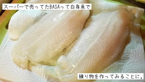 b_basa4
