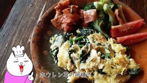 b_comida2017_11_18-2