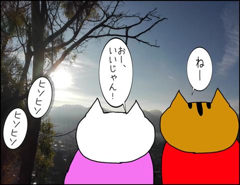 b_2020_2_17-1