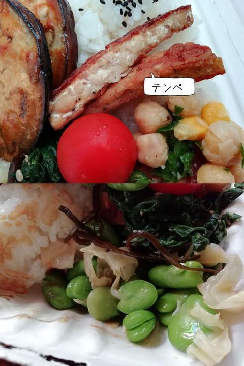 b_comida2019_08_17-16