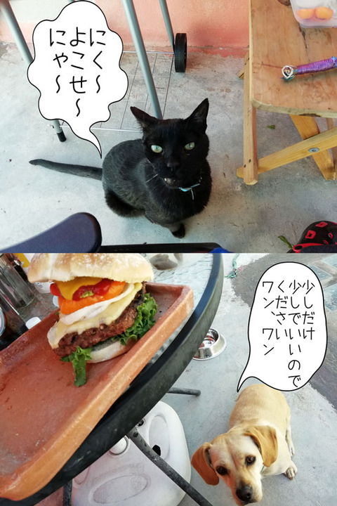 b_comida2019_04_20-8