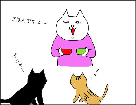 b_rutina-de-mis-gatos1