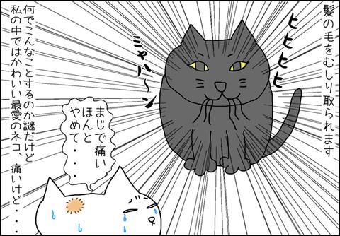 b_mi-gato4
