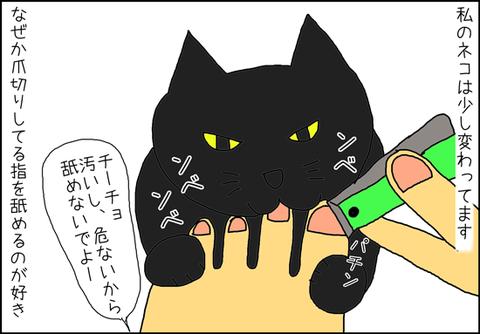 b_mi-gato1