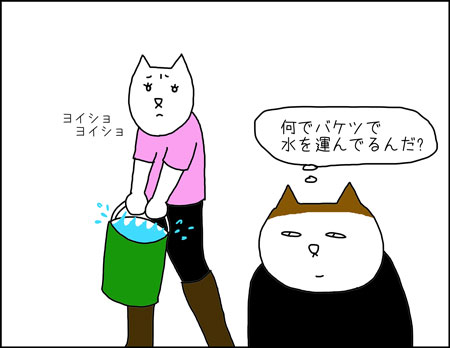 b_shampoo_estetica2
