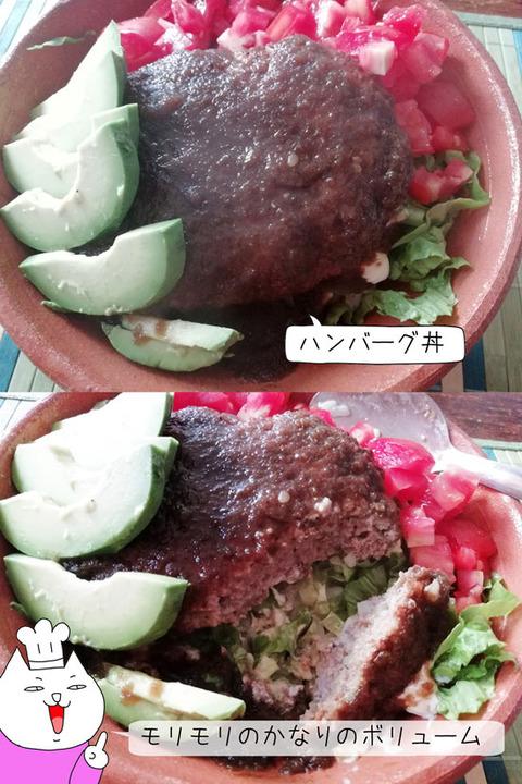b_comida2019_09_21-7
