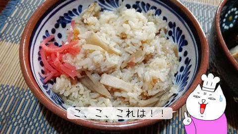 b_comida2018_11_3-11