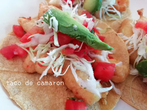 b_comida2019_08_24-11