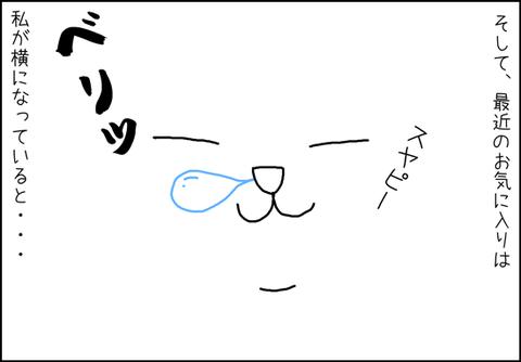 b_mi-gato2