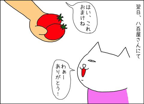 b_arcoiri4