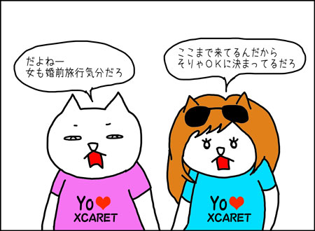 b_xcaret3-1
