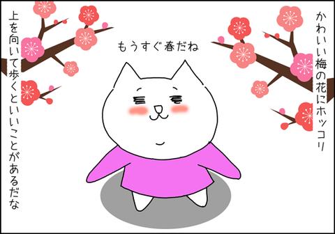 b_uewomuite3