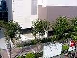 20040822-船橋市浜町・ビビットスクエア・店舗棟工事中-DSC08937