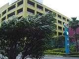 20040831-船橋市・ららぽーと・台風16号-DSC09254