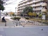 船橋市本町4丁目・旧々市役所跡公園-20041219-1318-DSC02431