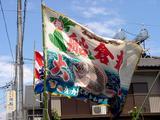 海老川になびく豊漁旗2