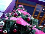 20041030-船橋市浜町2・ららぽーと・クリスマス-DSC00265