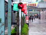 20041031-船橋市浜町2・ららぽーと・クリスマス-DSC00251