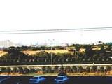 市川塩浜宮内庁鴨場-20050117-1237-DSC04340