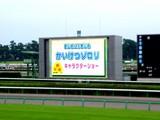 20050807-中山競馬場・花火大会-1751-DSC04206