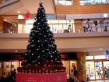 20051112-ビビットスクエア・クリスマス-1609-DSC06695