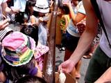 20050731-船橋ファミリィータウン夏祭り-1150-DSC03493