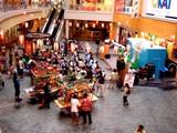 20050827-ビビットスクエア・納涼ムシキング祭-1404-DSCF0522