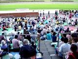 20050807-中山競馬場・花火大会-1737-DSC04183