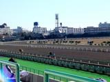 20050102-0957-船橋市若松1・船橋競馬場-DSC03402