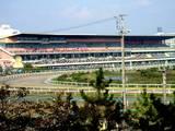 20051028-第7回船橋ケイバ5日目-1432-DSC03820
