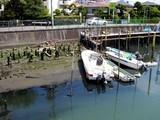 20050424-船橋市宮本3・浜町2・舟だまり・引き潮-1141-DSC09443