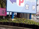 20050305-船橋市浜町2・ららぽーと・花壇・春-1006-DSC05922
