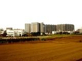 20051126-JR津田沼駅南口・農地再開発-1341-DSC08938