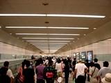 20050807-中山競馬場・花火大会-2008-DSC01282