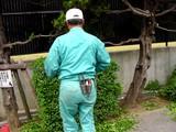 20050514-船橋市浜町2・ららぽーと私道の植栽-1548-DSC00056