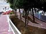 20050502-船橋市浜町1・公園の通路-1424-DSC00201