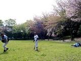 20050416-習志野市・習志野緩衝緑地・秋津公園-0948-DSC08664