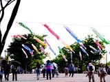 20050505-東京都江戸川区臨海町6・葛西臨海公園・こいのぼり-1520-DSC00974