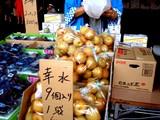 20050827-船橋中央卸売市場・盆踊り-1740-DSCF0591