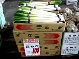 20051203-船橋中央卸売市場・ふなばし楽市-1012-DSC09609