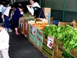 20050604-船橋市市場1・船橋中央卸売市場・ふなばし楽市-1023-DSC02472