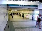 20050807-中山競馬場・花火大会-1732-DSC04165