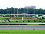 20050807-中山競馬場・花火大会-1751-DSC04207