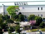 20050422-東京都江戸川区臨海町6・葛西臨海公園・こいのぼり-0823-DSC08866