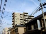 20051123-サン中央ホーム・コルギーS船橋-1350-DSC08457E