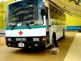 20051022-ららぽーと・日本赤十字社・愛の献血-1130-DSC00951