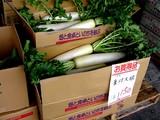 20050604-船橋市市場1・船橋中央卸売市場・ふなばし楽市-1023-DSC02473