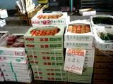 20051203-船橋中央卸売市場・ふなばし楽市-1010-DSC09603