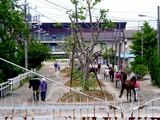 20050529-船橋市若松1・船橋競馬場-1219-DSC02237