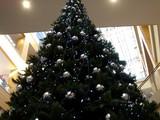 20051112-ビビットスクエア・クリスマス-1437-DSC06657